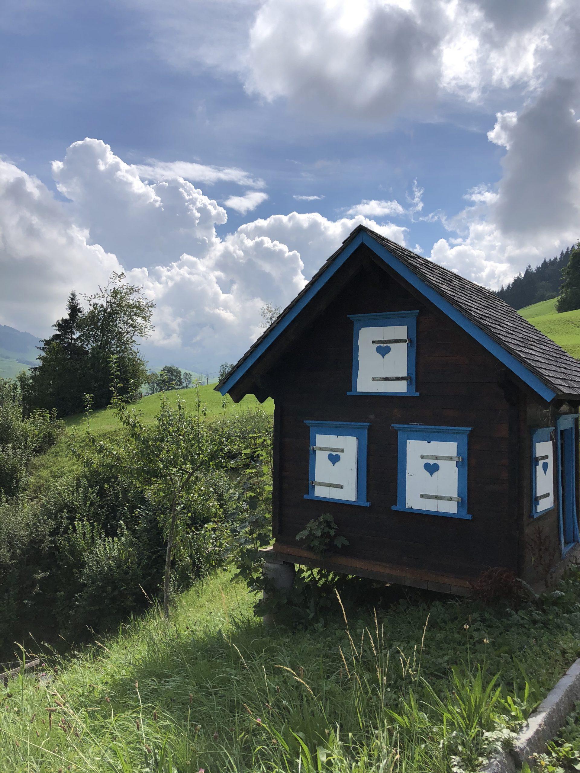Fredy Heinzer   Atlas- und Wirbelsäulenspezialist in Appenzell